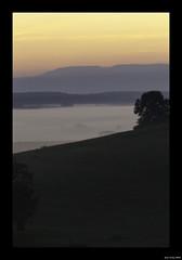 2011-09-03 06-48-34PHIer (Eric PHILIPPE) Tags: montagne angle ciel paysage arbre vosges brume matin leverdesoleil quotidien saison aube hautesane ballondeservance brouillards 365moments 365jours planchedesbellesfilles paysaage depuislamaison autreylscerre autreylescerre hautesanepaysages ericphilippe fromthebalconybrouillardbrumecielleverdesoleil
