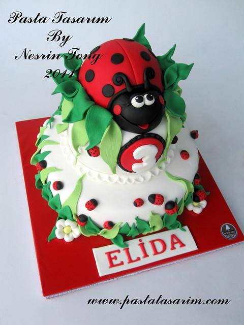 ladybug cake- ELİDA 3. BIRTHDAY