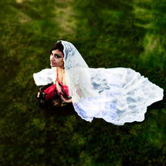 the weight of white. (Casey David) Tags: white green bird girl grass birds sitting veil dress lace 50mm14 sheet gypsy caseydavid caseydavidphotography