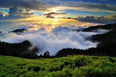 Sea of clouds in Mt. Hehuan  (Vincent_Ting) Tags: sunset sky mountain night clouds star glow taiwan trails flare formosa   crepuscularrays startrails                 seaofclous