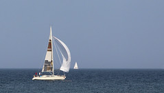Steady Wind (Dieter Müßler) Tags: germany deutschland yacht horizon sails balticsea minimalism spinnaker tyskland allemagne ostsee duitsland segel kühlungsborn mecklenburgvorpommern minimalismus