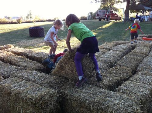 farm-fun-hay