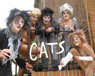 Children's Theatre of Mason - Cats