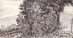 Ipsden, Oxfordshire (Martin Beek) Tags: panorama art pen ink observation landscape artwork seasons drawing sketchbook line study oxfordshire graphite throughtheyear ipsden britishlandscape britishlandscapes avisualdiary ipsdenoxfordshire landscapepaintinganddrawing ipsdenlandscape201013