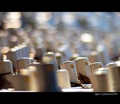 Soldiers in the Light (Fennsen) Tags: zeiss canon eos dof general bokeh availablelight 85mm contax 5d zaun dsseldorf planar markii mark2 zf primes lrick primelens flickraward canoneos5dmarkii planart1485 zeissprimes flickraward5 flickrawardgallery primesoneos primesoncanon soldiersinthelight artshotsdof fotosafaridiverslrick