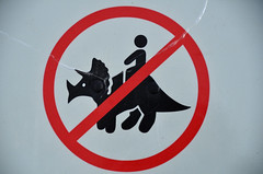No Riding Dinosaurs Sign (pokoroto) Tags: autumn canada sign october no riding drumheller alberta figure stick dinosaurs 10 2011    kannazuki   themonthwhentherearenogods 23