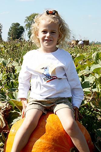 Auttie-smile-pumpkin