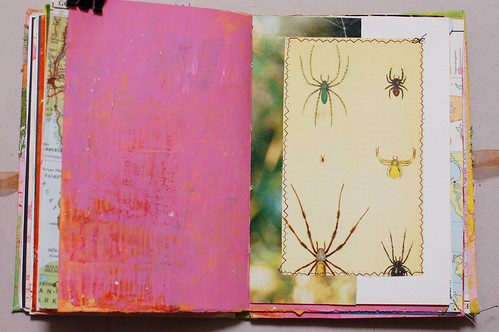 Journal of Scraps I: spider power