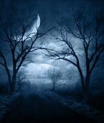 [フリー画像素材] 自然風景, 樹木, 月, 道路・道 ID:201110201000