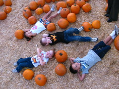 Pumpkin cousins