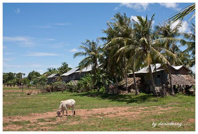 Khmer Village Homestay,Baray