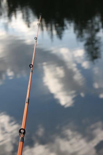 lake and pole