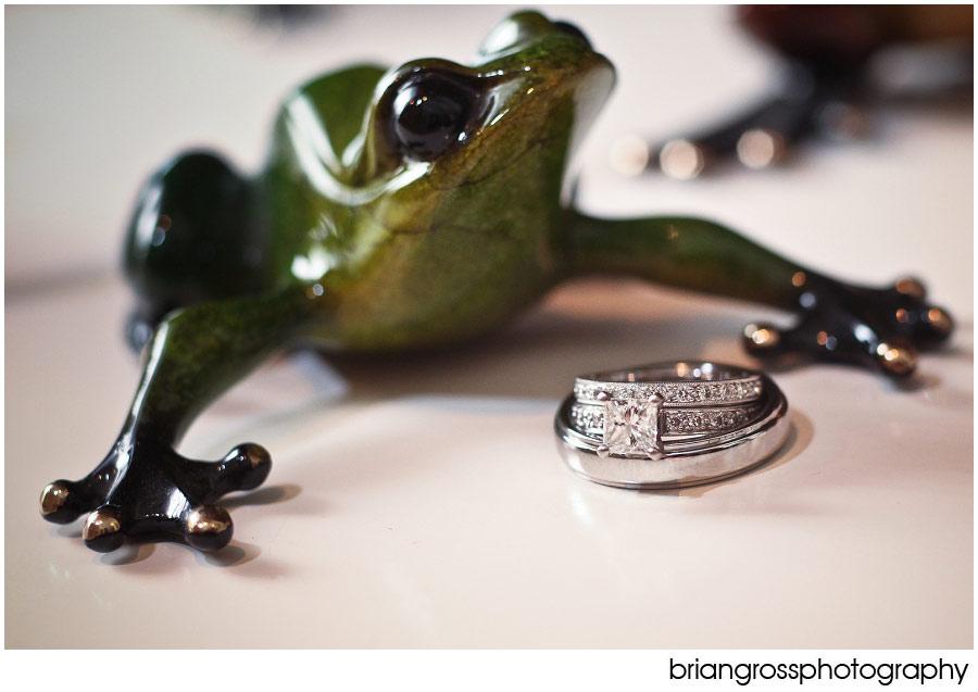 Ring_BlogPicks-286