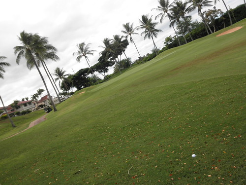 WAIKELE COUNTRY CLUB 105