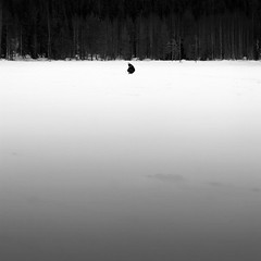 Finland | Lappi | Luosto | icefishing (get t android) Tags: trees people blackandwhite bw white lake black ice finland landscape fishing flickr italia lapland icefishing lappi lonelyness luosto