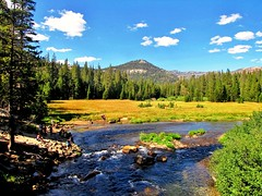 Backcountry Blues, San Juaquin River (moonjazz) Tags: california wild vacation people nature water beauty forest river photography photo fishing earth scenic hike clean vista environment restoration wilderness mammothlakes pure sanjoaquin anseladams unspoiled middlefork sanjuaquin