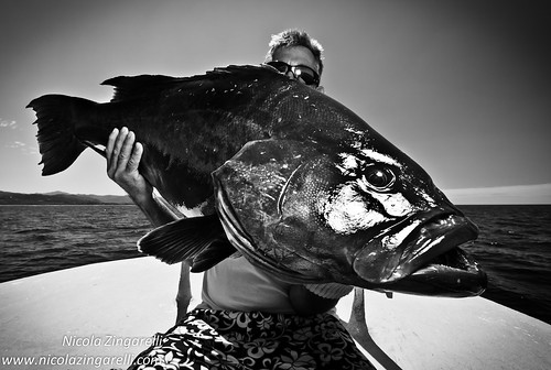 Costa Rica, Fisherman with a Broomtail Grouper (Mycteroperca xenarcha) lit with an SB800 off camera flash and edited in black and white by Nicola Zingarelli