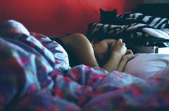 Science of sleep (thisisforlovers) Tags: flowers sleeping black flores girl cat blackcat photography 50mm bed nikon chica bokeh sleep negro gato desenfoque zebra nikkor f18 18 cama vignetting dormir eiderdown fotografía durmiendo cebra edredón viñeteado d7000