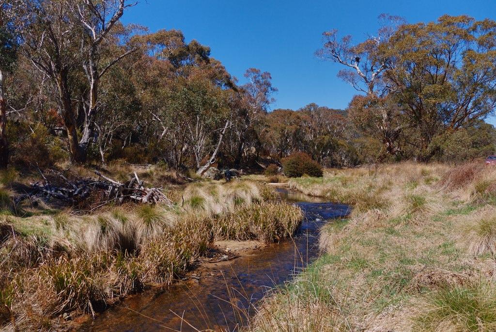 Bush creek near Naas Road, ACT, Australia.