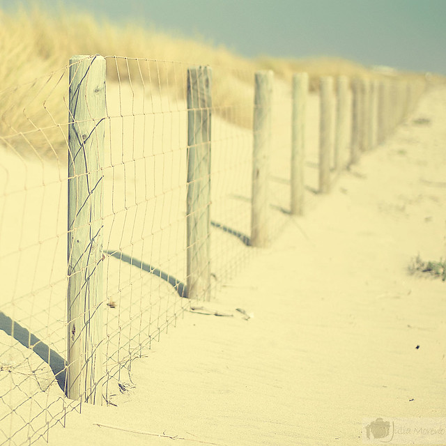 Recovery fence