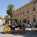 Siviglia: carrozza e cavallo