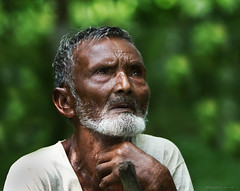 The Wise (bijoyKetan) Tags: old summer portrait man lost thoughts wise bangladesh in ketan 2011 panchagarh canonef70200mm28is debiganj bijoyketan
