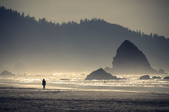 Cannon tele scene (sparth) Tags: beach silhouette oregon canon landscape october or silhouettes 300mm telephoto cannon pacificnorthwest l 28 300 cannonbeach pnw plage 2010 cannonbeachoregon 300mm28l 600mm 5dmkii