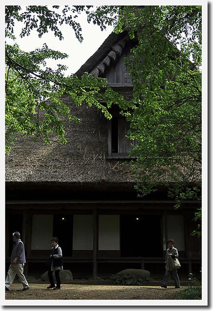 110430_140051_横浜_三渓園