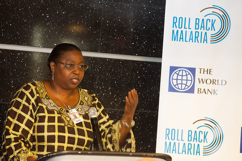 Lunch Co-Hosted by Roll Back Malaria, the World Bank and the African Union