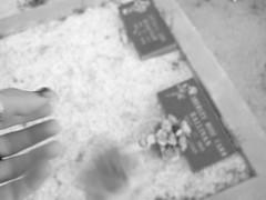 (DeeAshley) Tags: portrait people woman usa selfportrait me girl strange digital self canon private buzz photography photo google interesting flickr foto chica unitedstates image photos random retrato creative odd fotos jpg variety dslr various interesante genre varied iphone g11 eeuu variedad toedit gseries tumblr fotografia iphoneography compflight canong11 gogoloopie deeashley dionneashley dionnehartnett extrano mylovelymuse shehadpotential