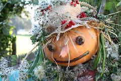 Veggin' Out (grigorisgirl) Tags: vegetables pumpkin beans berries wheat carrot oldmansbeard singleton wsussex wealddownlandmuseum veggyman