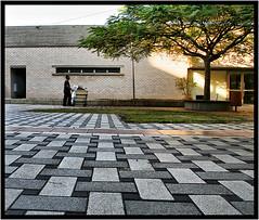 Workman (Polis Poliviou) Tags: door light man tree art grass canon hospital eos israel telaviv floor artistic middleeast tiles workman polis ramatgan medicalcenter telhashomer shebahospital flickroid poliviou