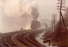 19810227 freight to Unterwellenborn (2) (niek opdam) Tags: class 44 saalfeld unterwellenborn