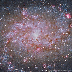 M33 Triangulum Galaxy Down To The Core (Terry Hancock www.downunderobservatory.com) Tags: camera sky mountain monochrome field night stars photography pier backyard williams tech space tube shed images astro mount observatory telescope ngc598 german astrophotography m33 short astronomy imaging triangulum ha pinwheel alpha ccd universe instruments 80 wo gem equatorial constellation celestron hydrogen paramount tmb teleskop astronomie byo f7 refractor deepsky 68mm autoguider flattener astrofotografie mi250 Astrometrydotnet:status=failed qhy5 130ss at2ff mks4000 gt1100s qhy9m kaf8300 opticstmb 92ss Astrometrydotnet:id=alpha20111084978967