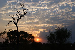"""Early Morning Sunrise - Kings Creek Station (Just """"For""""tography) Tags: sunset sunrise central australia northern territory kingscanyon alicesprings ayersrock"""