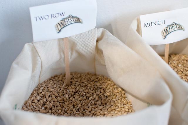 barley sorts