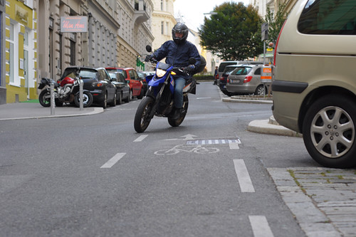 Wrong Way Bike Lane, Vienna