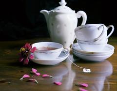 Tea For One (Z A N) Tags: china camera stilllife flower film field tea 4x5 bone portra vc toyo 160 redrosetea kodakportra brooklynnewyork
