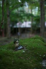 20110928 Kyoto-Ohara 10 (Alone) (BONGURI) Tags: temple nikon kyoto 京都 ohara 寺院 地蔵 大原 天台宗 お地蔵様 d3s sigma50mmf14exdghsm sanzenin三千院 gettyimagesjapanq4 tendaisyu