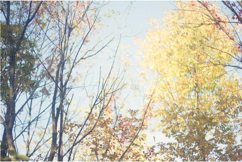 Screen Shot 2011-10-16 at 10.42.26 PM