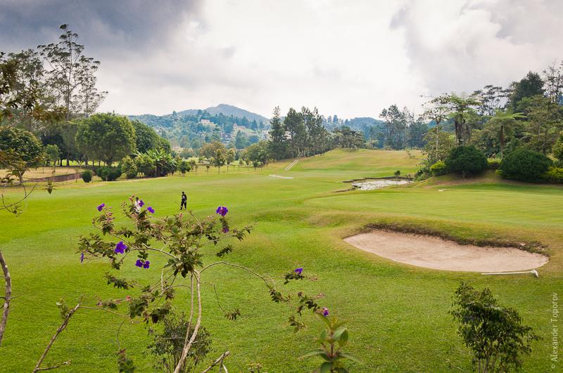 Golf Club @ Tanah Rata