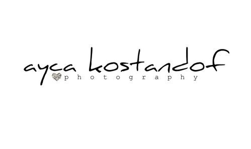 logo-son_resize