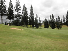 WAIKELE COUNTRY CLUB 238