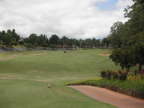 WAIKELE COUNTRY CLUB 255