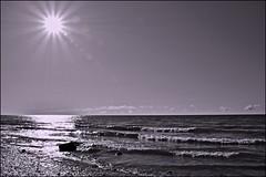 Lake Ontario Sunburst (Jeannot7) Tags: ontario monochrome photoshop lakeontario cobourg photofilter 123bw