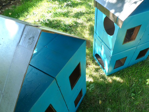 cardboard kitty houses