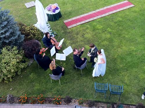 Свадебное фото by alex_lisov
