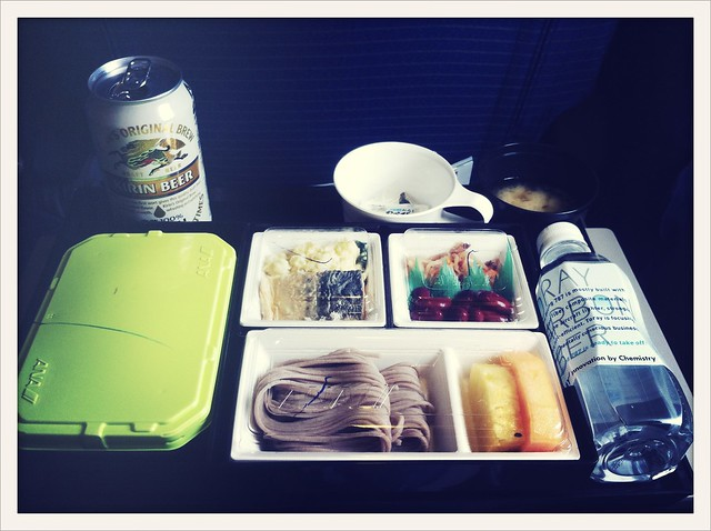 Japanese Airplane Food