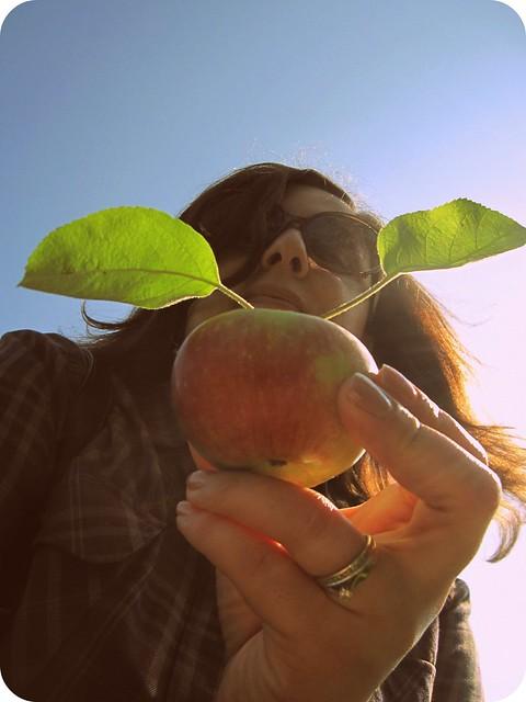 ana apple