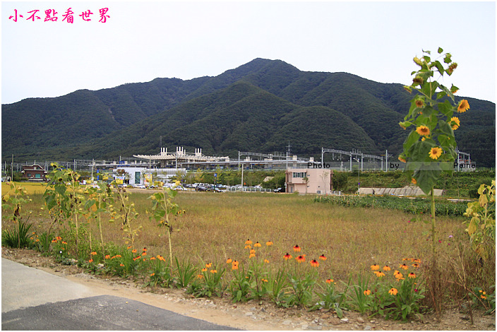 小法國村 (132).jpg